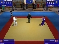 3D Judo Fighting Screenshot