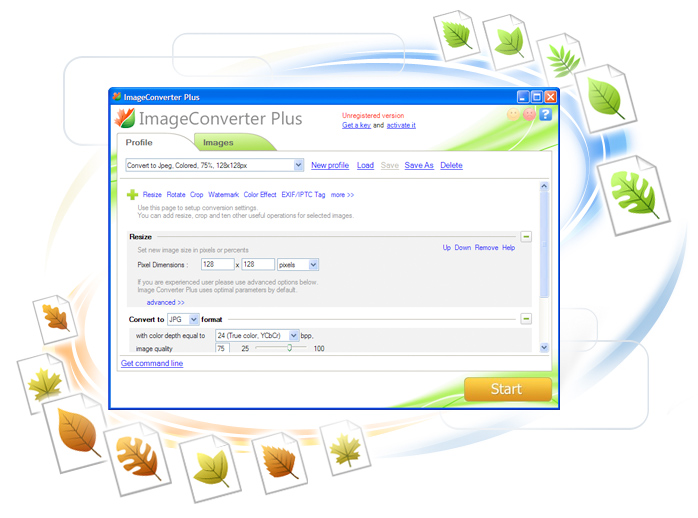 ImageConverter Plus 8.0.94 Screenshot