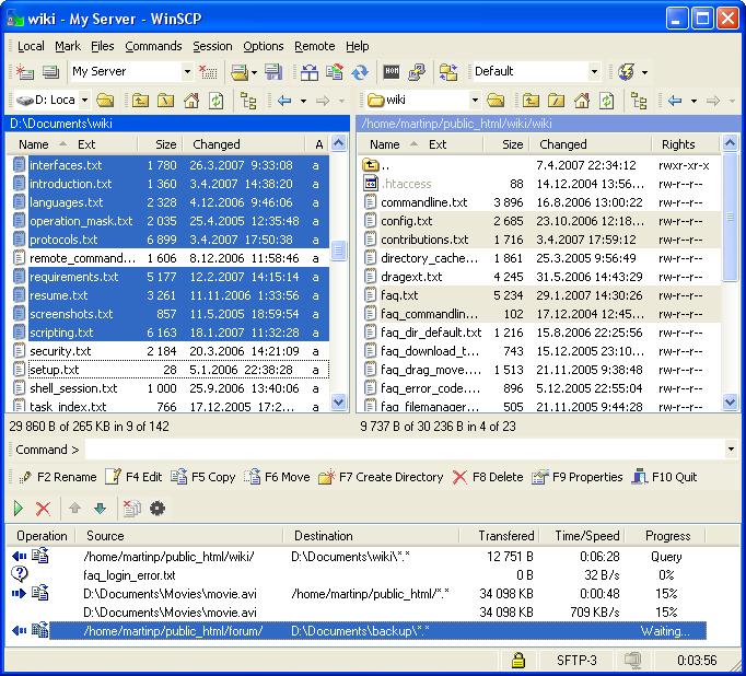 WinSCP Screenshot