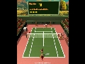 Moorhuhn Tennis Screenshot